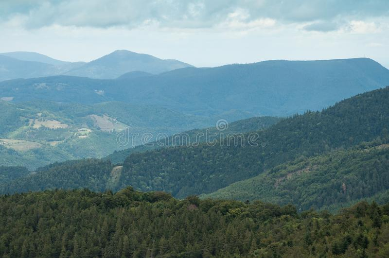 Landscape with Mountains and Forest. View of Landscape with Mountains and Forest stock images