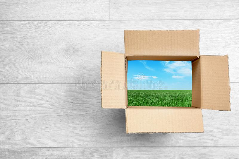 View of landscape through open cardboard packaging royalty free stock image