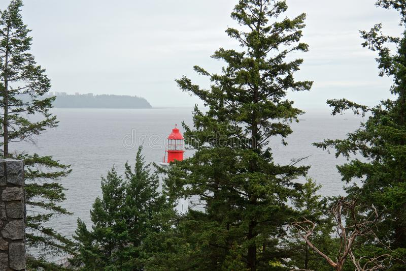View of the lighthouse and ocean through the coniferous forest in cloudy weather stock photography