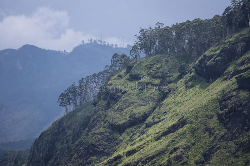 View from Little Adams Peak to Ella Rock, Sri Lanka. Hill covered with grass, rocks and trees during bad weather royalty free stock photography