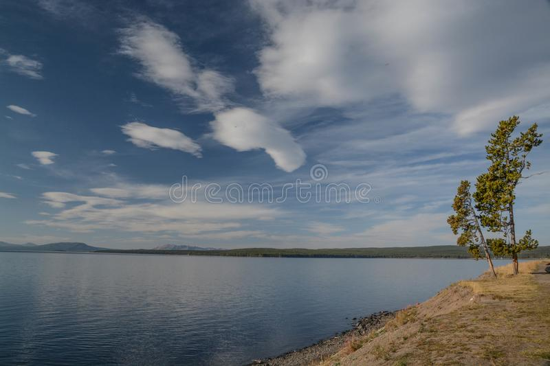 Looking Out Across Lake Yellowstone royalty free stock photography