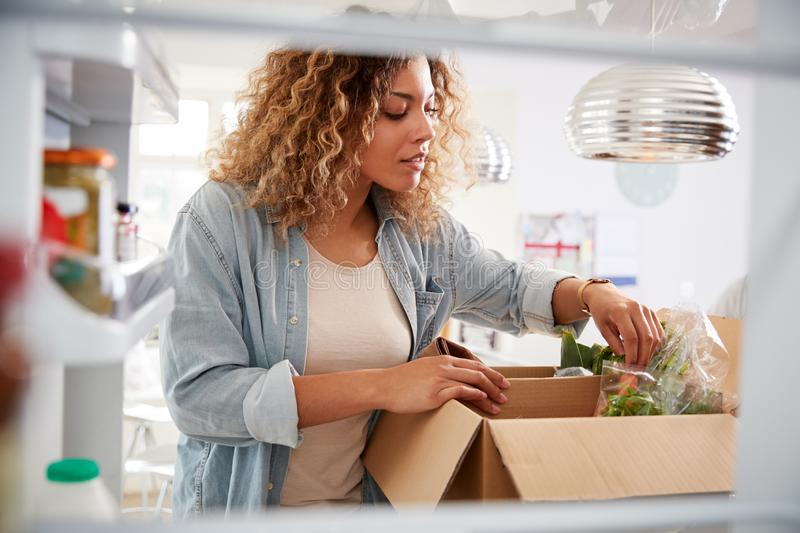 View Looking Out From Inside Of Refrigerator As Woman Unpacks Online Home Food Delivery stock photos