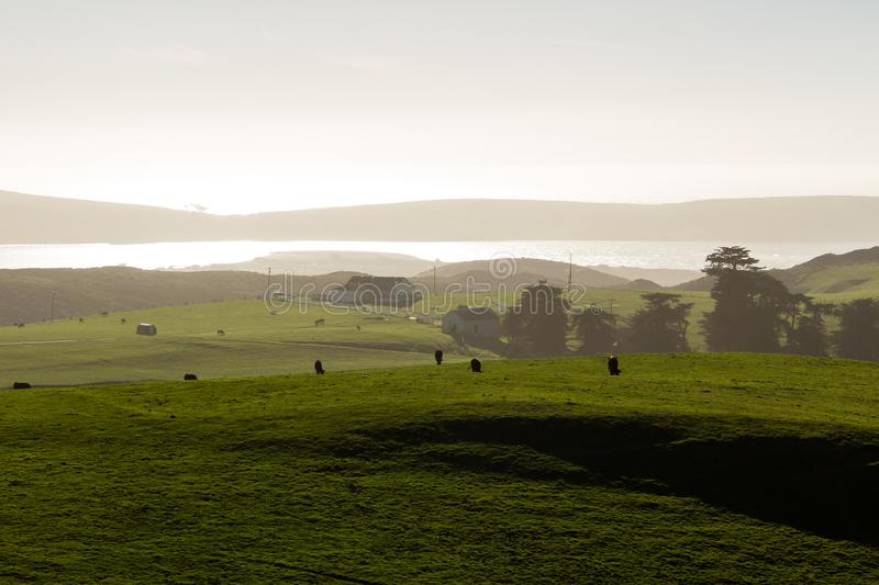 A view looking south from elephant rocks above Dillon Beach royalty free stock photography