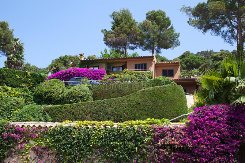 View of the lovely garden. Quiet house hidden away in a lovely garden royalty free stock photo