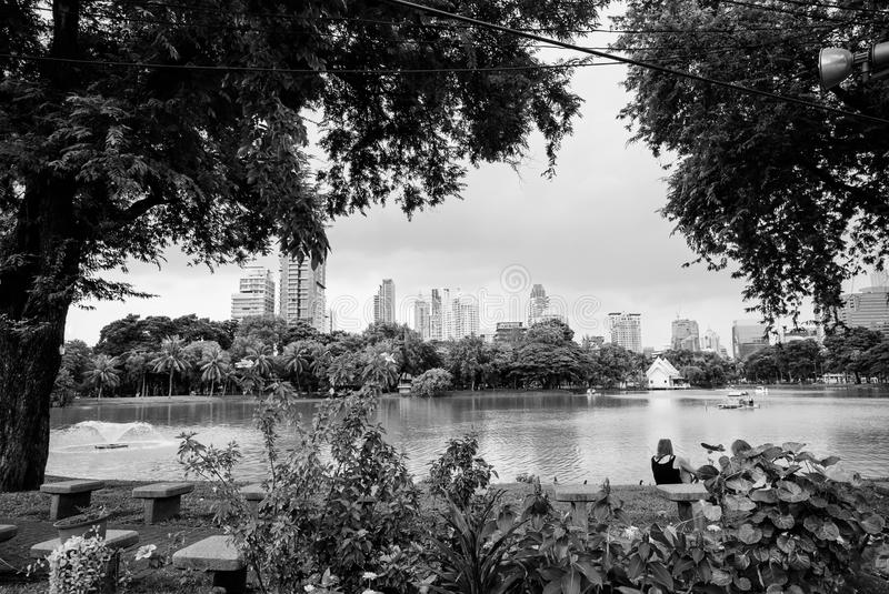 View of Lumphini park over pond, Bangkok royalty free stock image