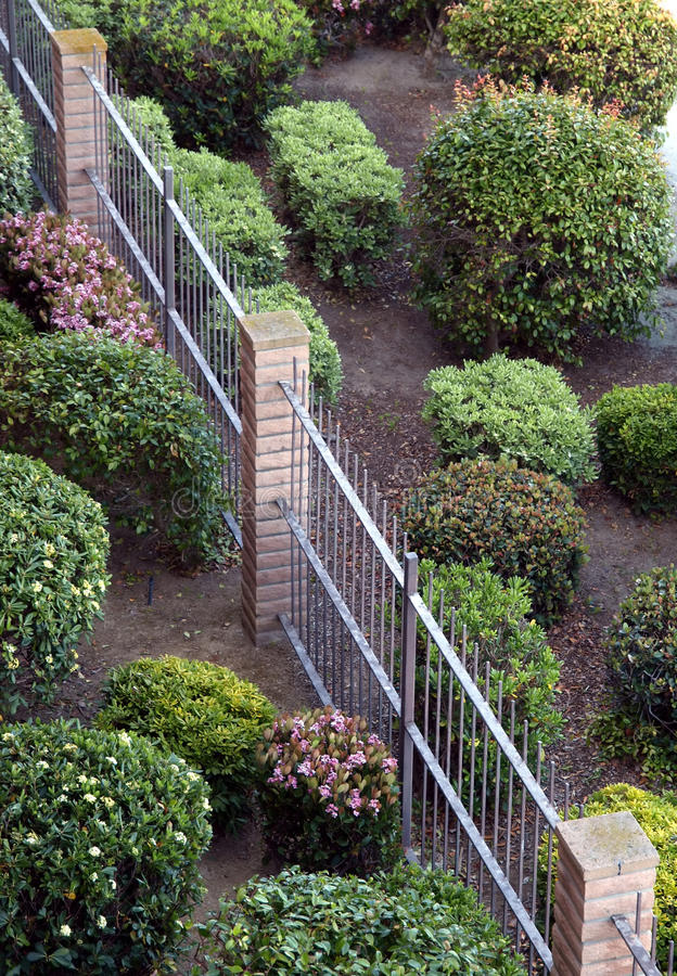 Download View Of Manicured Bushes And Fence Stock Image - Image: 9940951