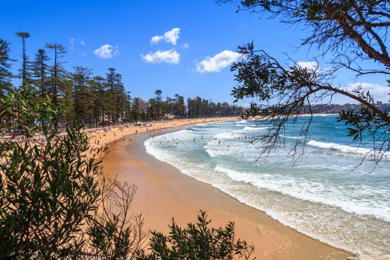 View of Manly beach. Sydney, Australia stock photo
