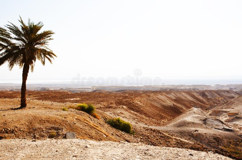 View from the Masada on the desert on a sunny day stock photo