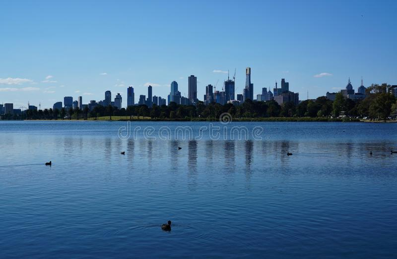 View of Melbourne skyline from Albert Park Lake. Distant view of Melbourne skyline from Albert Park Lake royalty free stock photos