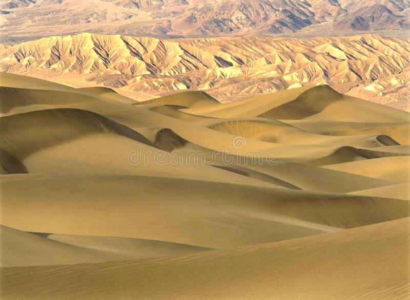Morning light in Death Valley sanddunes royalty free stock photo