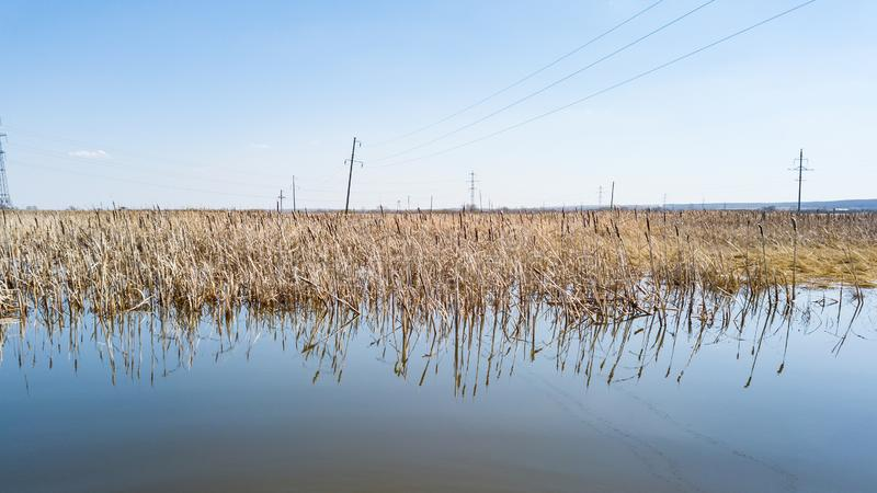 A view from the middle of the lake on the water in which spring dried yellow reeds are reflected under a clear blue sky without royalty free stock photography
