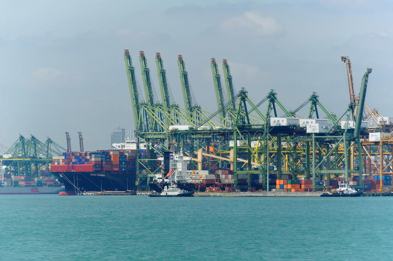 View of modern and busy Singapore Tanjong Pagar PSA ports serving cargo ships. SINGAPORE - JANUARY 26: View of modern and busy Singapore Tanjong Pagar PSA ports royalty free stock photos