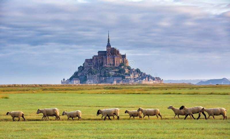 Mont Saint Michel. View of the Mont Saint Michel abbey. Normandy, France stock photo