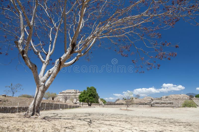 Ancient mexican ruins on Monte Alban, Oaxaca, Mexico. View of Monte Alban, a large pre-Columbian archaeological site, Santa Cruz Xoxocotlan Municipality, Oaxaca royalty free stock images