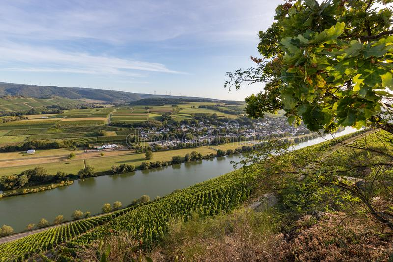 View of the Moselle valley at Brauneberg royalty free stock image