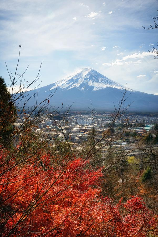 View of Mount Fuji with a beautiful foreground of red pine trees from Chureito pagoda viewpoint, Japan. royalty free stock photo
