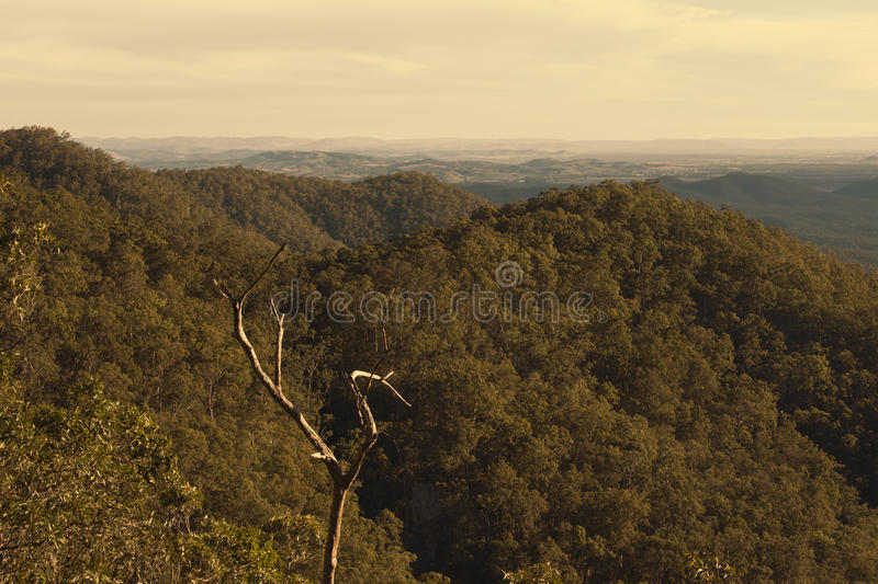 View from Mount Glorious near Brisbane, Queensland. stock photo