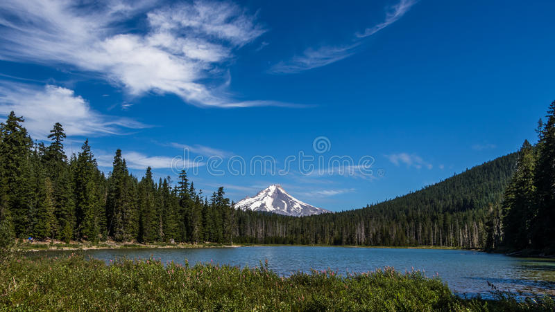 View of Mount Hood from Frog Lake Oregon royalty free stock image
