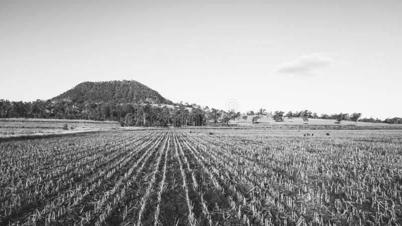 View of Mount Walker, Queensland stock photos