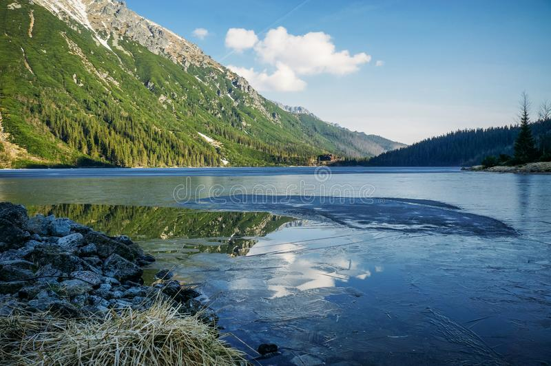 view of mountain lake with trees on slopes of mountain over water, Morskie Oko, Sea Eye, Tatra National royalty free stock images