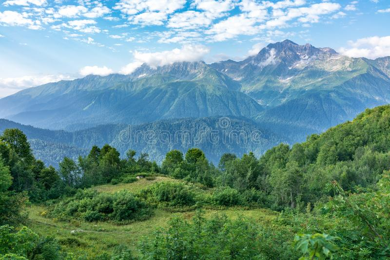 View of the mountain meadow with trees, grass and footpath and high mountains with snow-capped peaks in the distance. Caucasus, Russia royalty free stock photos