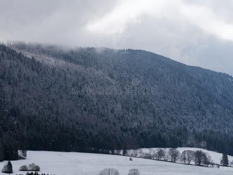 View of mountain with pine trees and valley covered with frost and snow. royalty free stock photos