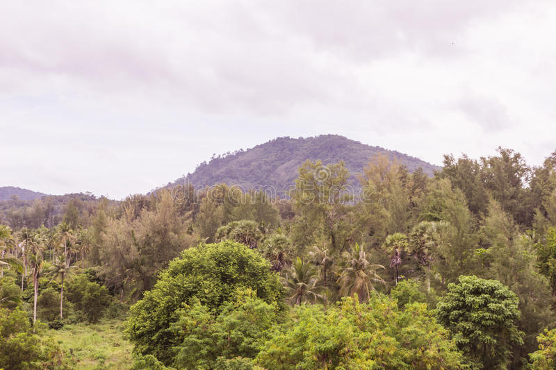 View of mountain before the rain comes. Phuket, Thailand royalty free stock image