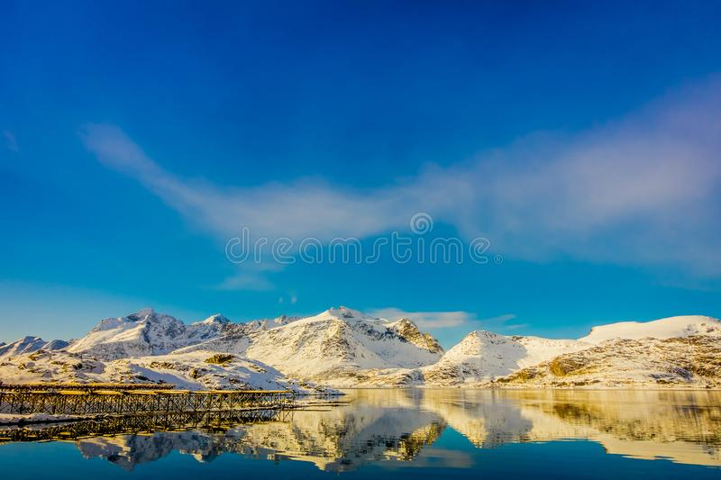 View of mountain reflecting in the water with cod stock fish heads located at one side of the lake on Lofoten islands stock photos