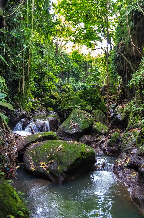 View on a mountain river in Sacred Monkey forest in Ubud. View on a mountain river  and waterfall in Sacred Monkey forest in Ubud, Bali, Indonesia royalty free stock photo