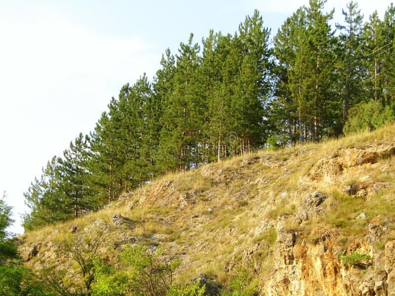 View of the mountain top. Southeastern Serbia stock images
