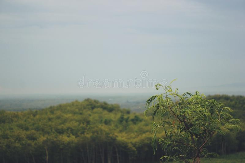 View of the Mountains in Gunungkidul Indonesia. The best and most charming vacation spot stock photos