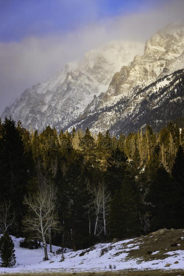 The View of the Mountains from Horseshoe Park in Rocky Mountain national Park stock image