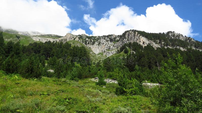 View of mountains landscape and overcast sky. Mountains view. Meadow, trees and rocky mountains. View of mountains landscape and overcast sky. The Pirin royalty free stock images