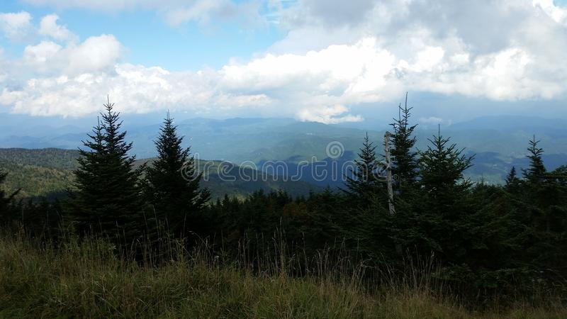 View near the summit on Old Mitchell Trail in Mt Mitchell state Park near Marion NC royalty free stock photography
