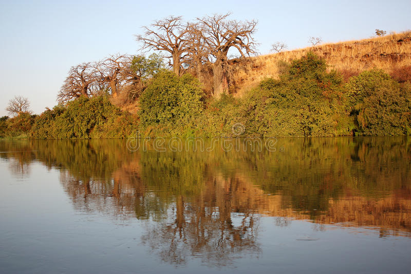 View of the Niger River. The view of the Niger River royalty free stock photo