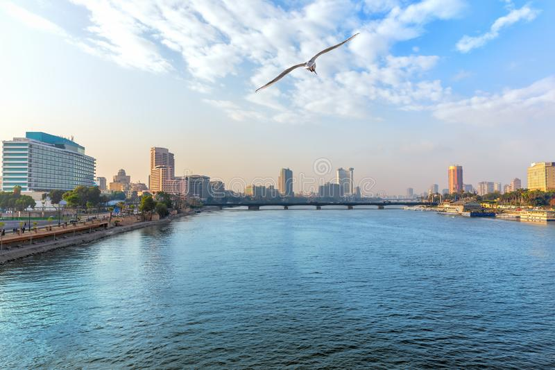 View of the Nile in the downtown of Cairo, Egypt.  stock photography