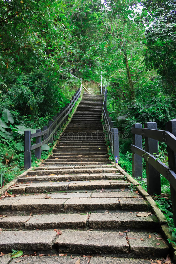 Free View Of Stone Staircase To Elephant Mountain Stock Photo - 97030330