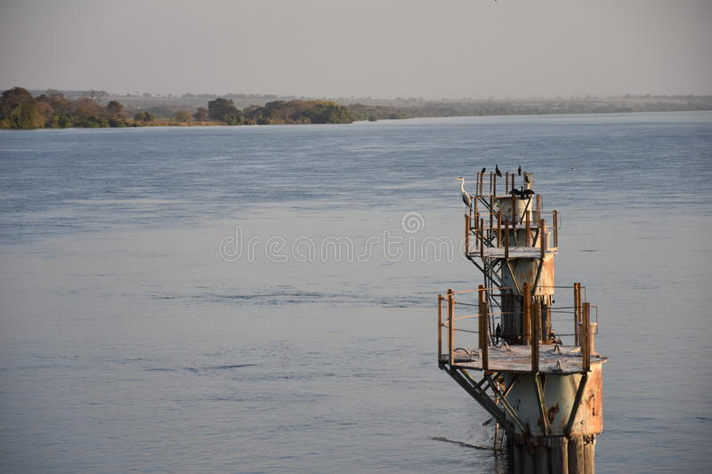 View of the old port on Parana River in Ilha Solteira, Brazil. View of an heron and some other birds on the old port on Parana River, Brazil royalty free stock photography