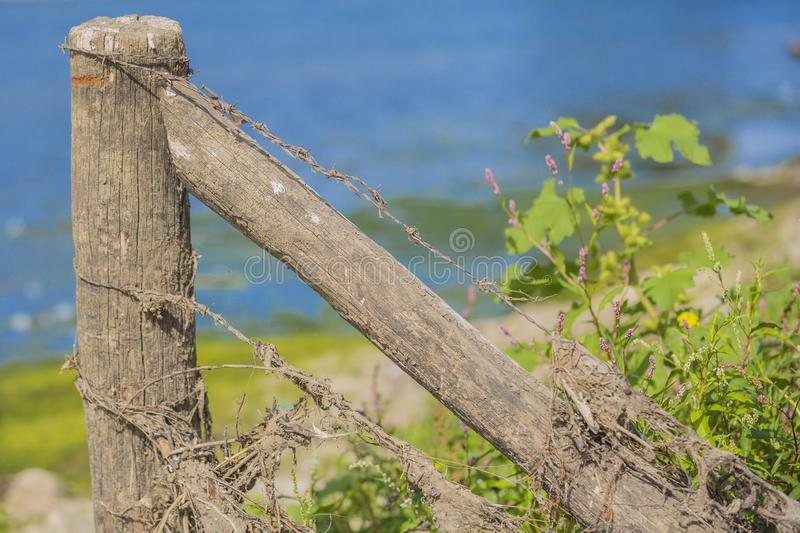 View of old wooden poles with barbed wire with blue backgroundin. In the river park Maasvallei, south Limburg in the Netherlands Holland stock images