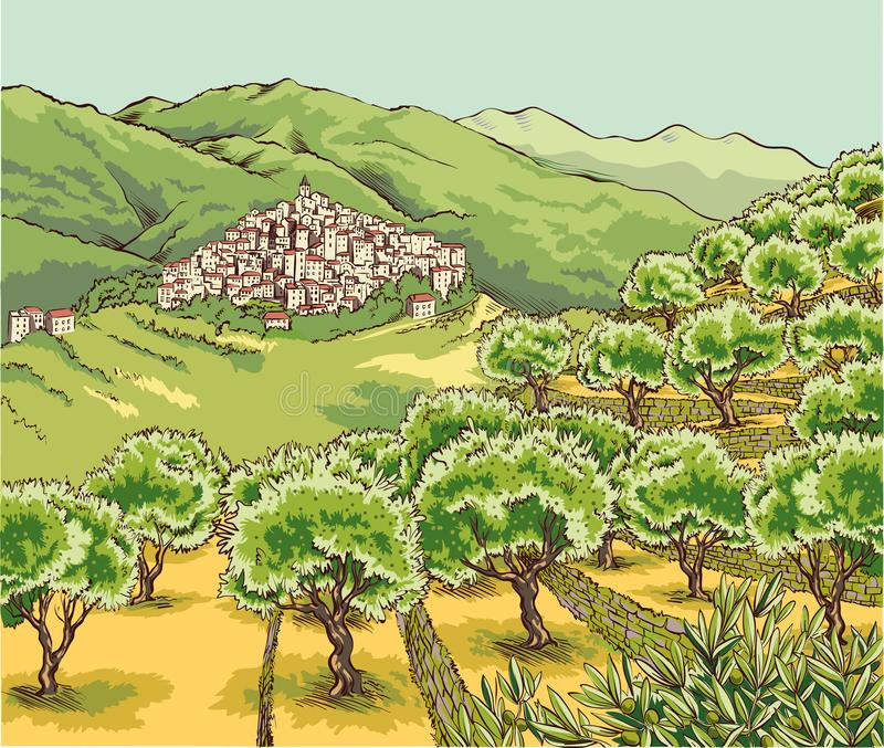 View of an olive grove in the hinterland of Liguria. With village perched on the hill vector illustration