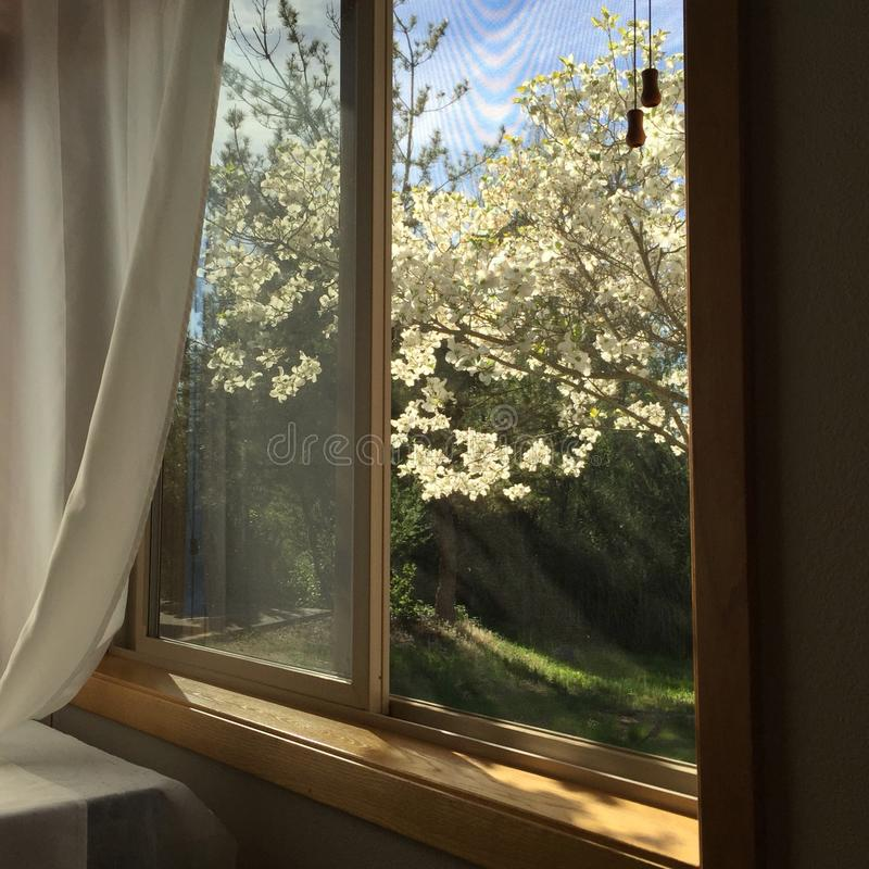 Download View Out A Bedroom Window Stock Image Of Open