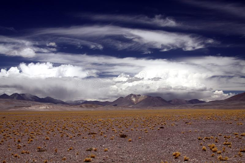 View over barren dry endless plain dotted with tufts of dried gras and blurred mountain range in the horizon stock photo