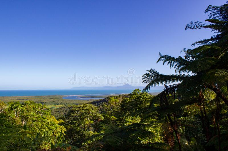 view over Daintree National Park during sunset, Cape Tribulation, Australia royalty free stock photography