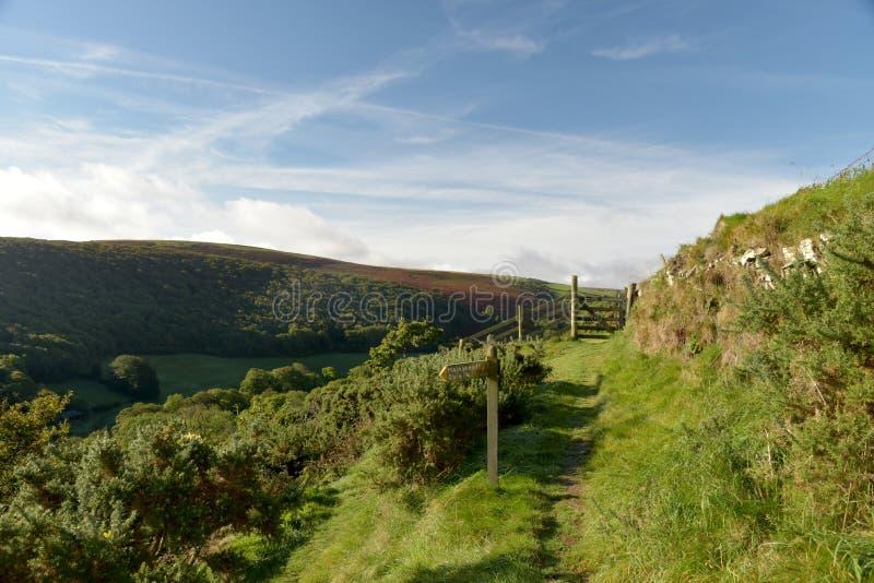 View over Exmoor from County Gate, North Devon. View from County Gate over valley to heather moors in Exmoor, North Devon stock photos