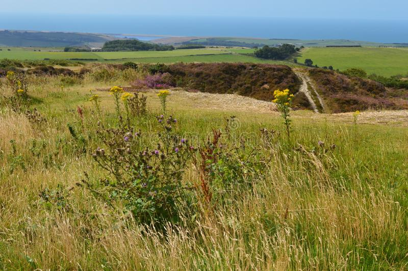 View over the fields to the fleet and chesil beach dorset stock images