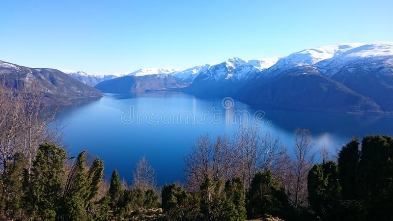 View over the fjord stock photo