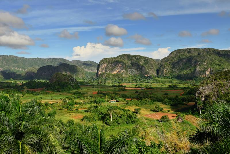 Cuba, view green Vinales Valley stock photography