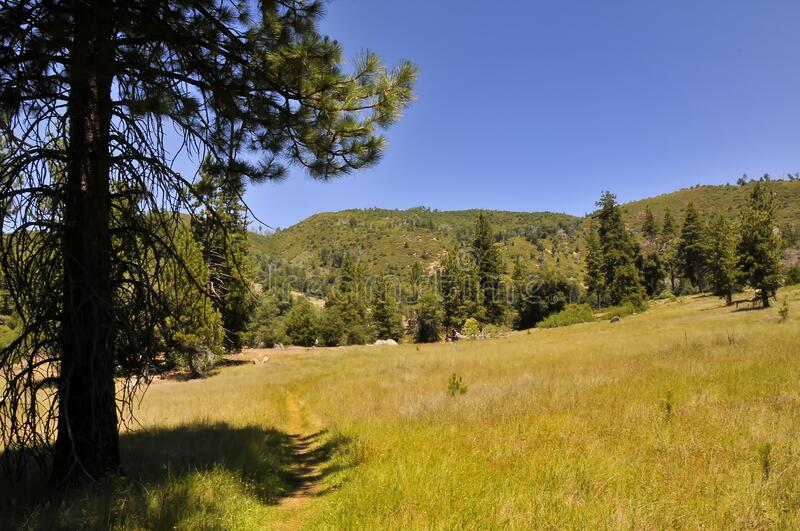 View over Mount Palomar National Park stock photo
