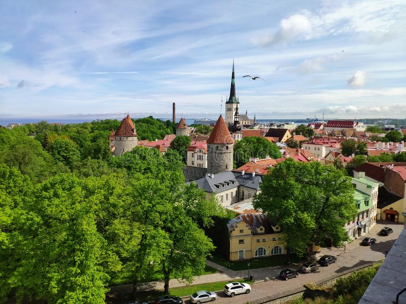 Old town - Tallinn royalty free stock images