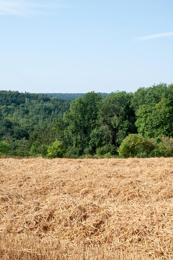 Rural landscape in swabian alb with hilly forest. View over straw heaps in stubble field to wooded hills in swabian alb in Germany stock photo